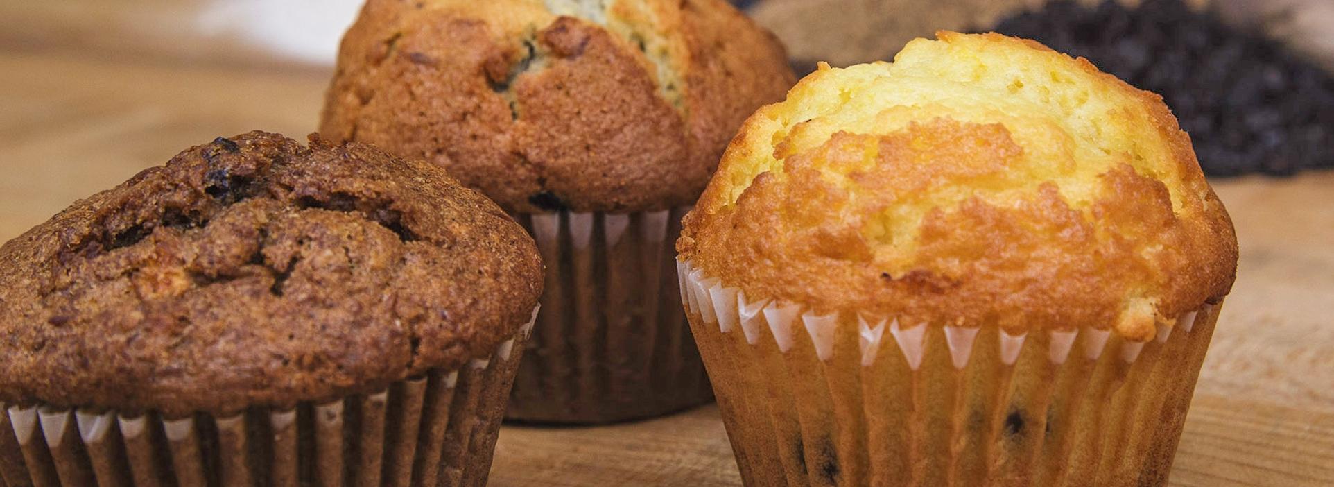 MuffinsMain_IMG_0126